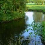Rzeka Mołstowa